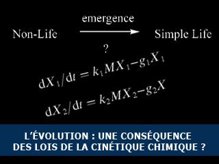 L'évolution Darwinienne, conséquence de la cinétique chimique ?