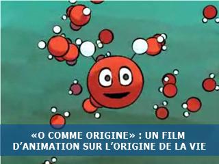 O comme origine : un film d'animation pour tous
