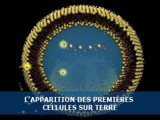 L'apparition des premières cellules sur Terre