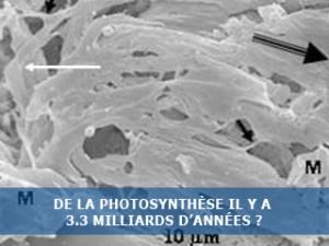 De la photosynthèse il y a plus de 3 milliards d'années ?