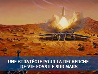 Etude de la vie primitive terrestre : une stratégie pour la recherche de vie fossile sur Mars.