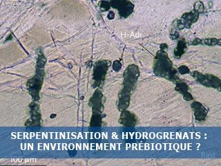 Serpentinisation & hydrogrenats : un environnement prébiotique favorable à l'émergence des premières cellules ?
