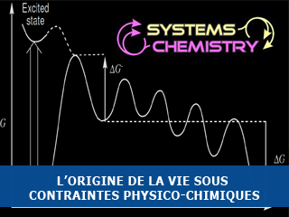L'origine de la vie sous contraintes physico-chimiques
