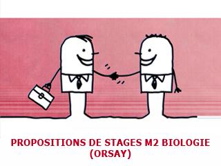 Deux stages de M2 pour biologistes proposés à l'université Paris Sud (Orsay)