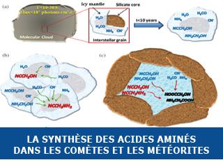 Les voies de synthèse des acides aminés dans les environnements extraterrestres
