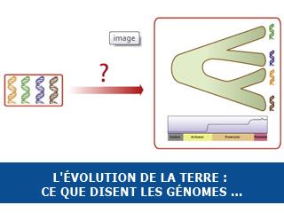L'évolution de la Terre : ce que disent les génomes …