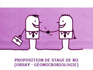 Proposition de stage de M2 (géomicrobiologie) à Orsay