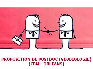 Proposition de postdoc à Orléans, CBM, Géobiologie