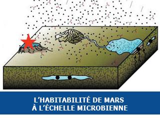 L'habitabilité de Mars à l'échelle microbienne