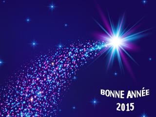 Meilleurs voeux pour 2015 !
