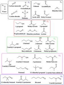 Structure des 33 molécules identifiées avec le système VAHIIA à partir de l'altération des glaces de méthanol pur.