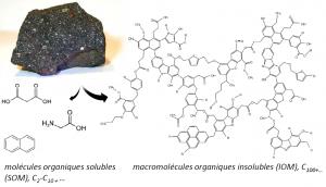 Exemples de molécules organiques détectées dans la phase soluble, et structure estimée de la phase insoluble de la météorite de Murchison