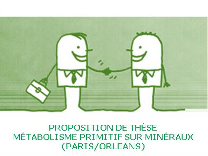Proposition de thèse Métabolisme primitif à la surface de Minéraux