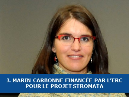 Le projet STROMATA financé par l'ERC