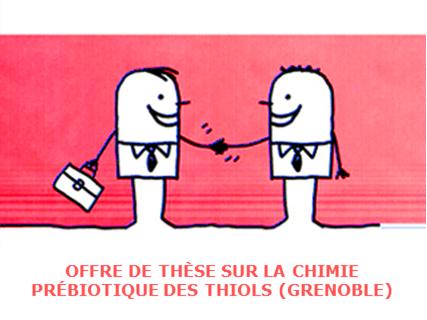 Offre de thèse à Grenoble sur la chimie des thiols