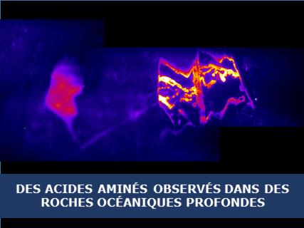 De potentiels précurseurs des premières briques du vivant observés dans des roches océaniques profondes