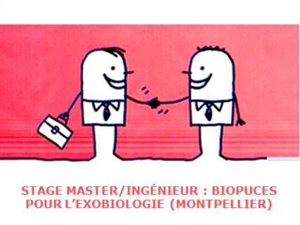Proposition de stage Master ou Ingénieur : Biopuces pour l'exobiologie