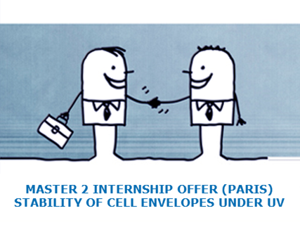 Master 2 Internship Offer on the stability and preservation of cell envelopes under UV (Paris)