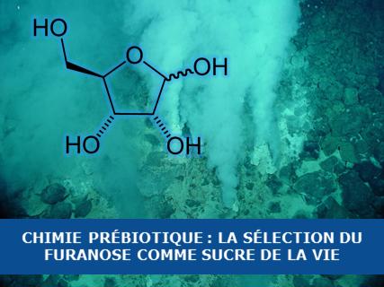Chimie prébiotique : la sélection du furanose comme sucre de la vie